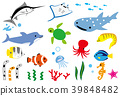 marine life, variation, southern countries 39848482