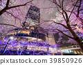 【도쿄】 벚꽃 39850926