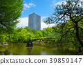 hibiya park, spring, tender green 39859147