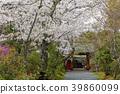 ทัศนียภาพ,ภูมิทัศน์,ประเทศญี่ปุ่น 39860099