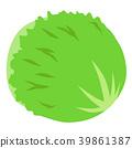 生菜 蔬菜 圖標 39861387