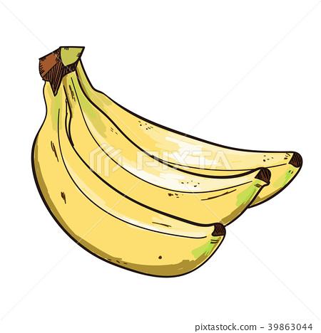 矢量 香蕉 水果 39863044