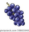 grape, fruit, fruits 39863048