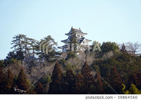 Gujo Hachimanjo castle 39864560