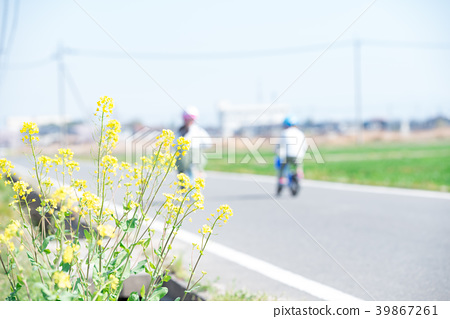 強姦鮮花和兒童騎自行車 39867261