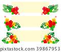 槿 花朵 花卉 39867953