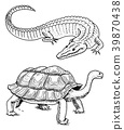 Crocodile and turtle. Reptiles and amphibians Pet 39870438