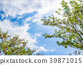 자연 이미지 39871015