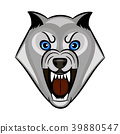 wolf growls vector 39880547