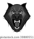 wolf growls vector 39880551