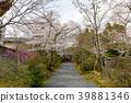 ทัศนียภาพ,ภูมิทัศน์,ประเทศญี่ปุ่น 39881346