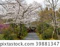 ทัศนียภาพ,ภูมิทัศน์,ประเทศญี่ปุ่น 39881347