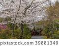 ทัศนียภาพ,ภูมิทัศน์,ประเทศญี่ปุ่น 39881349