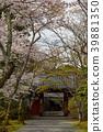 ทัศนียภาพ,ภูมิทัศน์,ประเทศญี่ปุ่น 39881350