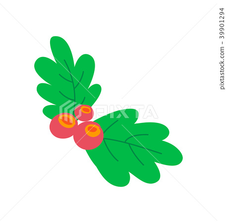 Leaves Berries Colorful Image Vector Illustration 39901294