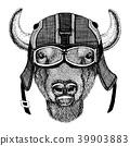 Buffalo drawing vector 39903883