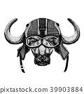 buffalo vector biker 39903884