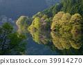 신록의 室生湖 (우다시) 39914270