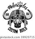 buffalo biker drawn 39920715