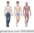 포즈, 신체, 흰색 39928608