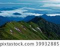 ridge, scape, scene 39932885