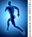 3d illustration male running x-ray skeleton. 39935851