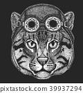 cat, drawing, helmet 39937294