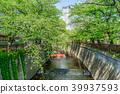 【東京都】目黒川 39937593