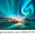 Aurora borealis in Lofoten islands, Norway 39942576