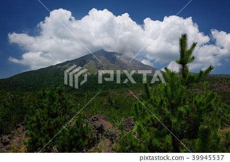 가고시마 현 가고시마시 사쿠라지마 아리 무라 용암 전망대 39945537