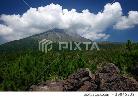 가고시마 현 가고시마시 사쿠라지마 아리 무라 용암 전망대 39945538