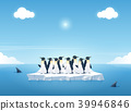 Group of the penguins on a piece of iceberg. 39946846