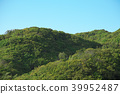 mountain, tree, forest 39952487