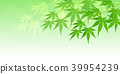 foliage, leaf, leafs 39954239