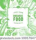 Vector hand drawn vegetables Illustration. Vintage style banner template. Retro organic farm food 39957647