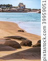 coast, france, brittany 39959051