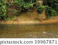 cliff, river, dry river bed 39967871