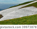 mountain, remaining snow, Day Lily 39973878