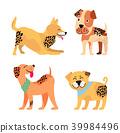 dog vector animal 39984496