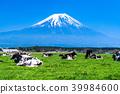 靜岡靜岡縣牧場牧場位於富士山和朝霧高原 39984600