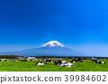 富士山 大農場 牧場 39984602