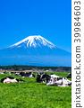 富士山 大農場 牧場 39984603