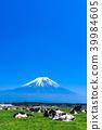 靜岡靜岡縣牧場牧場位於富士山和朝霧高原 39984605