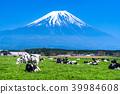 富士山 大農場 牧場 39984608