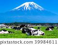 富士山 大農場 牧場 39984611