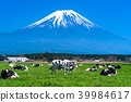 靜岡靜岡縣牧場牧場位於富士山和朝霧高原 39984617