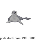 Seal sea animal, inhabitant of cold seas vector Illustration on a white background 39986001
