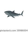 鯊魚 向量 向量圖 39986004