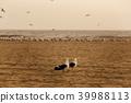 加州 加利福尼亞 亨廷頓海灘 39988113