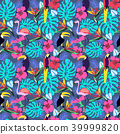 tropical, toucan, vector 39999820